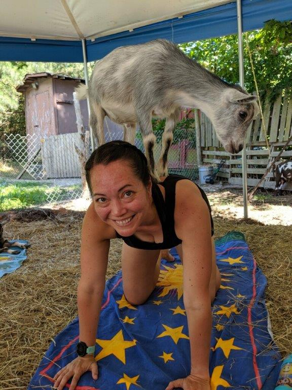 All 4's with a goat balancing on my back.