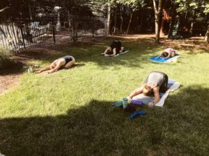 Students in child's pose outside in my backyard during one of my practice teaching classes.